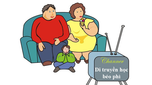 nguyên nhân béo phì ở việt nam