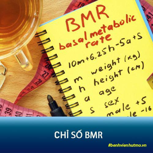 bmr là gì