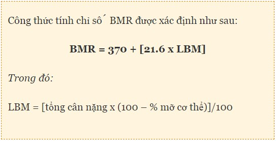 Tính chỉ số BMR