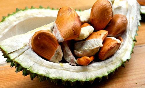 ăn sầu riêng có mập ko